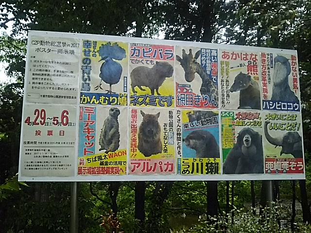 選挙ポスター10名が立候補